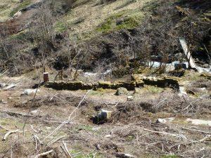 Gamal mur i eikelia